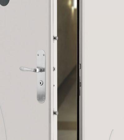 portes blind es pour appartement d s 2047 ht picard serrures. Black Bedroom Furniture Sets. Home Design Ideas
