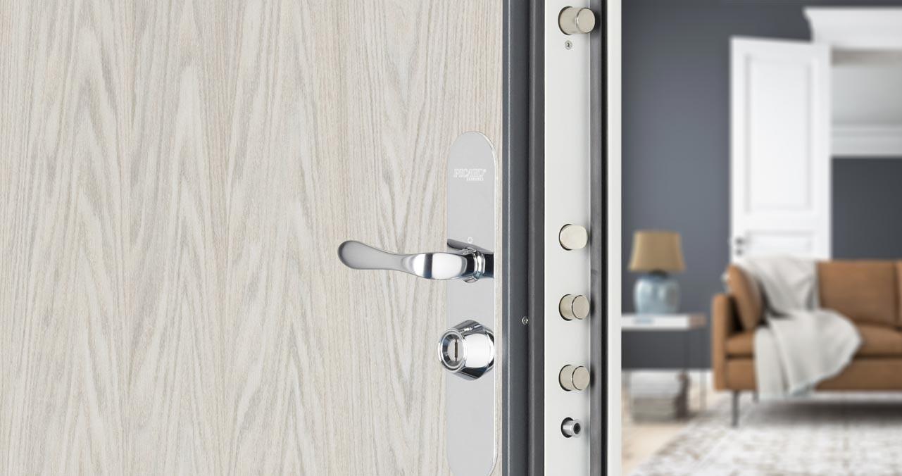 portes blind es et verrouillages multipoints de haute s curit picard serrures. Black Bedroom Furniture Sets. Home Design Ideas